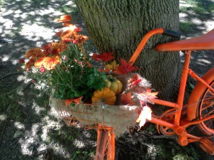 upcycled bicycle